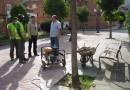 El Consistorio sellará 200 alcorques en San Martín para mejorar la limpieza y eliminar barreras