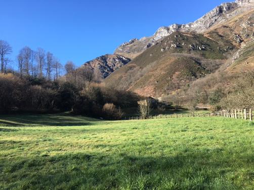 Terrenos de Villamorey donde se ubicará el camping