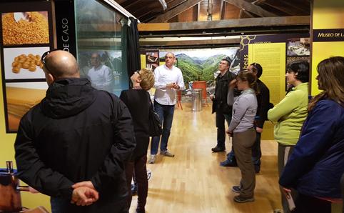 Visita al museo de la apicultura