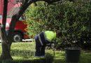 Langreo reedita el curso de oficiales de jardinería