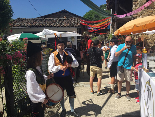 Imagen del Tolivia Fest en 2016