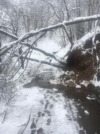 Desprendimientos causados por la nieve en Laviana.