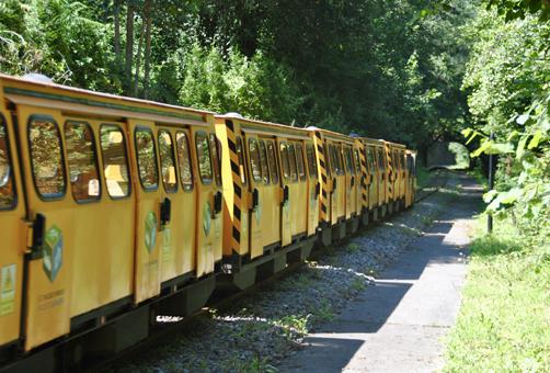 Tren del Ecomuseo Minero Valle de Samuño.