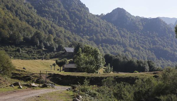 Vega de Brañagallones en Caso.